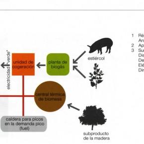 Vivienda medioambientalmente sostenible: estándares e innovación