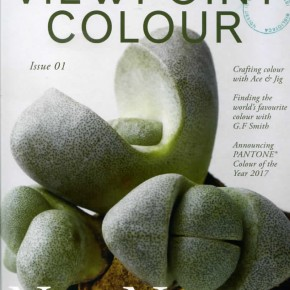 VIEWPOINT COLOUR: THE COLOUR FUTURES BOOK / NUEVA REVISTA
